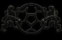 aplg e1596808303569 128x83 - Kobiecyfutbol.pl